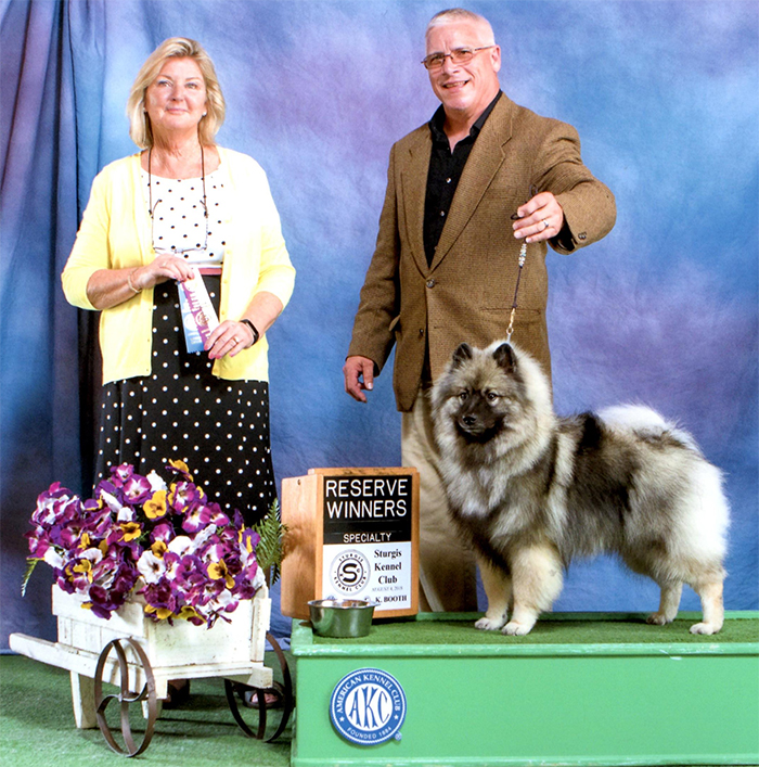 Jamey wins Reserve Winners Bitch at the Great Lakes Keeshond Club of Michigan Specialty at 9 months old!